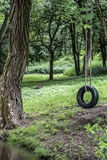Car tire used as swing on tree forest near creek stream Concept photo of childhood nostalgia memory retro vintage. Car tire used as swing on a tree in the forest Royalty Free Stock Photo