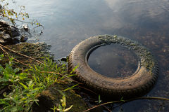 Car tire in the water Royalty Free Stock Images