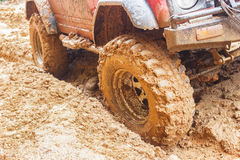Car tires in dirt road Stock Photo