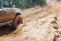 Car tires in dirt road Royalty Free Stock Photo