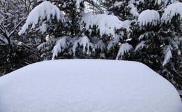 Car totally under snow Stock Photos