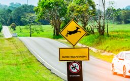 Car of the tourist driving with caution during travel at asphalt road near yellow traffic sign with deer jumping inside the sign. And have message caution Stock Photo