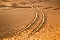 Car track in the desert Stock Photography
