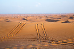 Car track in the desert Royalty Free Stock Image