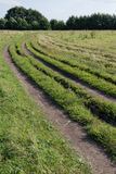 Car track on field with grass Royalty Free Stock Photography
