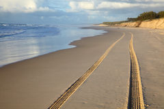 Car track on a sand Stock Images