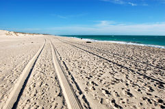 Car track on white sand beach Stock Photo