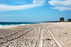 Car track on white sand beach Stock Image