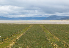 Car tracks on a grass field leading to a white beach Stock Images