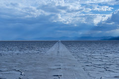 Car tracks on salt flats. Royalty Free Stock Image