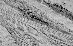 Car tracks on sand road in black and white Stock Photo