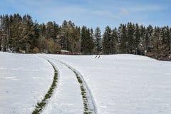 Car tracks in snow Stock Photos