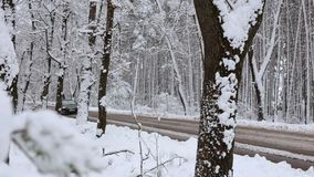 Car traffic in the winter season. Winter traffic. Car moves on snowy road through forest. Car traffic in the winter season stock video footage