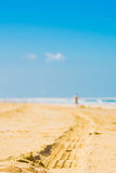 A car trail on the beach Royalty Free Stock Images