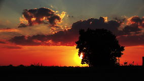 Car with Trailer Silhouette in Evening Sunset through Countryside stock footage