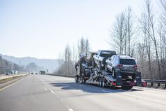 Big rig car hauler semi truck transporting cars on wide divided highway with winter naked trees. Car transportation by big rig semi truck allows all dealerships stock photo
