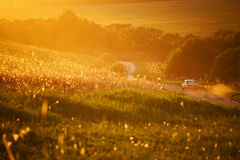 Car traveling on a country road among fields Royalty Free Stock Photography