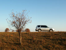 Car & Trees on Landline. A car stop on grassland in autumn, blue sky background. Shot in Hebei of China Stock Photos
