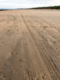 Car tyre tracks on the beach sand Royalty Free Stock Photo