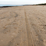 Car tyre tracks on the beach sand Royalty Free Stock Images