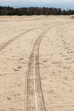 Car tyre tracks on the beach sand Royalty Free Stock Photos