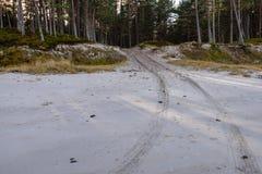 car tyre tracks on the beach sand Stock Photos
