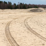 Car tyre tracks on the beach sand Royalty Free Stock Image