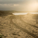 Car tyre tracks on the beach sand Stock Images