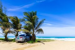 Car under the palm tree on the beach. The car is parked under a palm tree on the beach Royalty Free Stock Images