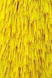 Car washing brushes Stock Image