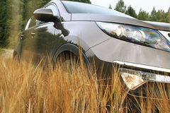 Car in a wheat field summer Stock Image