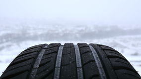Car wheel on the background of winter forest Royalty Free Stock Photo