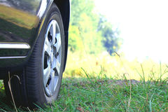 Car wheel in summer Stock Photos