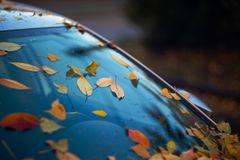 Car windshield with orange leaves on it. The car has long stood in the parking lot and does not go royalty free stock images