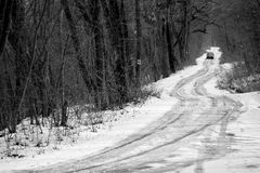 Car on the winter road. In the forest with black and white royalty free stock photos