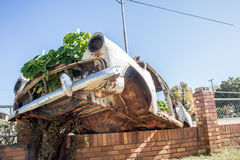 Car Wreck as Garden on Wall Royalty Free Stock Image