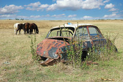 Car Wreck And Horses Grazing Royalty Free Stock Photos