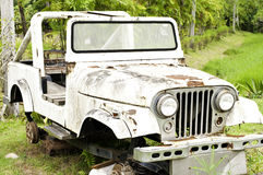 Car Wreckage. In natural background Royalty Free Stock Images