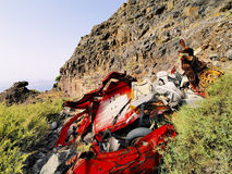 Car Wreckage Royalty Free Stock Photo