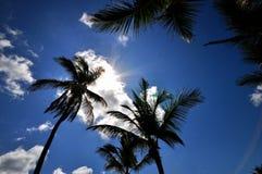 Caraïbe Sun Photos libres de droits