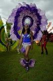 Caraïbisch Carnaval Stock Afbeeldingen