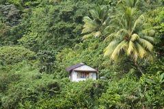 Caraïbisch Dominica, royalty-vrije stock afbeeldingen