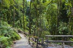 Caraïbisch Dominica, stock afbeeldingen