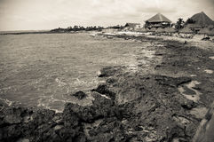 Caraïbisch Landschap royalty-vrije stock afbeeldingen