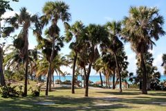 Caraïbisch overzees landschap stock afbeelding