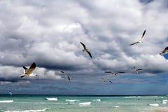 Caraïbisch overzees landschap royalty-vrije stock fotografie