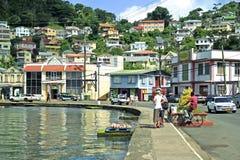 Caraïbisch panorama van St George in Grenada, royalty-vrije stock fotografie