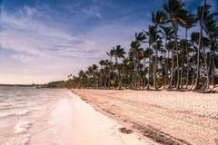 Caraïbisch strand Stock Afbeeldingen