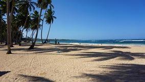 Caraïbisch strand Stock Foto's
