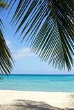 Caraïbisch Strand, Dominicaanse Republiek stock afbeeldingen